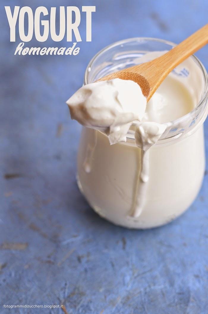 Ricetta Per Yogurt Greco Con Yogurtiera.Yogurt Fatto In Casa Senza Yogurtiera Frames Of Sugar Fotogrammi Di Zucchero